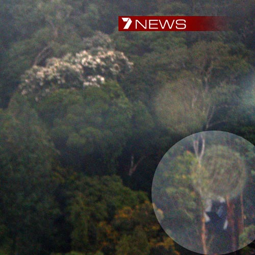 The crash site in the Owen Stanley Range in Papua New Guinea. Photo: Courtesy Seven News