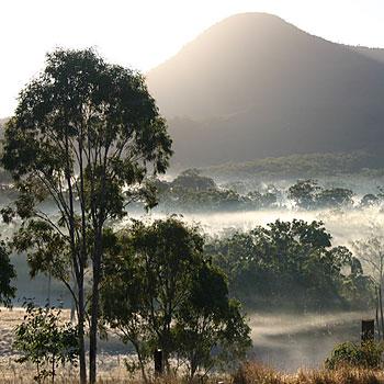 Morning mist below Spicers Canopy. Photo: Kerryn Manifold