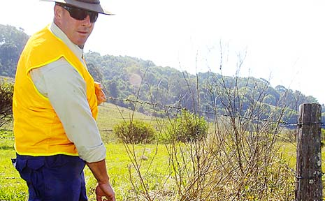 FENCED IN: Lismore City Council ranger Stuart Thomson shows a poorly maintained fence, which he claims is the reason for the region's shocking statistics for road livestock accidents.