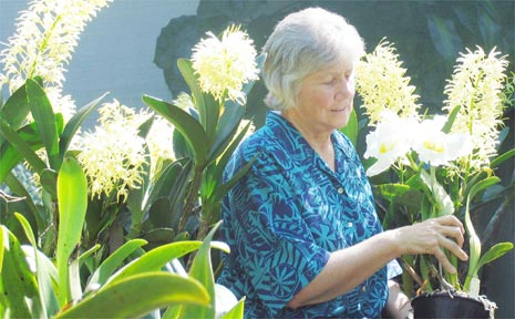 Penny Fox, secretary of the Byron District Orchid Society, with Ben McClymont's dendrobiums and cattleyas.