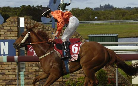 BIG CHANCE: A file picture of Felixtrinidad winning at Ballina. Felixtrinidad is one of the big chances in the $50,000 The Point Ballina Cup (1600m) today and is Gary Kliese's tip to win the big race.