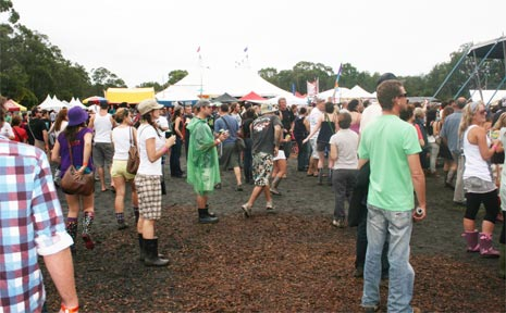 Big crowds flock to the Bluesfest every year.