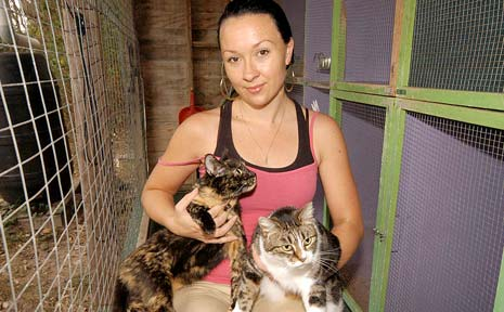 CALL GOES OUT: Susan Muir's daughter Kally cares for two of the four cats, Firey (left) and Polly, who are in desperate need of homes.