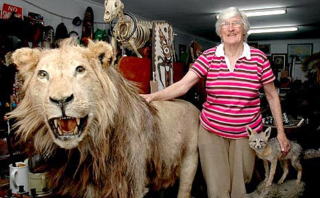 Rita Rainbow has the roar product with a stuffed lion in her unique antiques shop.