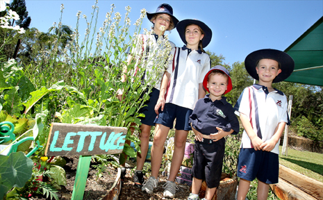 Students have won a garden competition