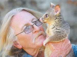 "Possum-keeper reunited with ""pet"""
