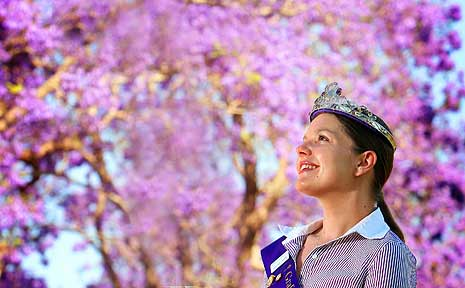 Come along and celebrate the 75th Grafton Jacaranda Festival on October 30 to November 8.