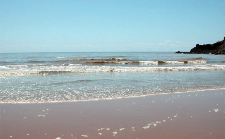 The main beach at Agnes Water was closed for two hours on Thursday as brown algae rolled in. (File photo)