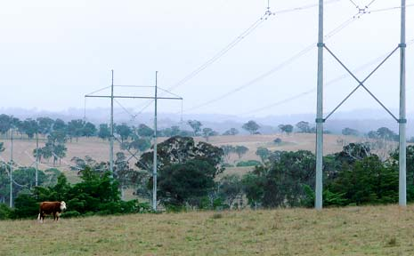 Power lines set in a 60 metre-wide corridor such as this will run between the Dumaresq substation at Bonshaw, west of Tenterfield, and the Lismore substation.