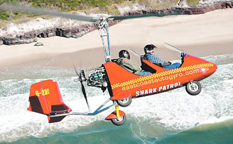 Aviation company East Coast Autogyro has begun patrolling beaches for sharks.