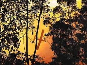 Water bombers called in as bushfire burns out of control