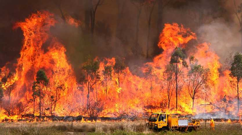 Firefighters backburn along Sleipners Road to contain a large bushfire in New Zealand Gully East of Mount Archer.