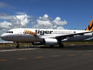 Tiger takes flight to fight battle over Coffs Coast skies