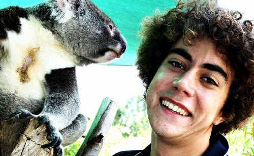 Volunteer Josh Halverson works with Whistler, a blind koala who lives at the Australia Zoo Wildlife Hospital.