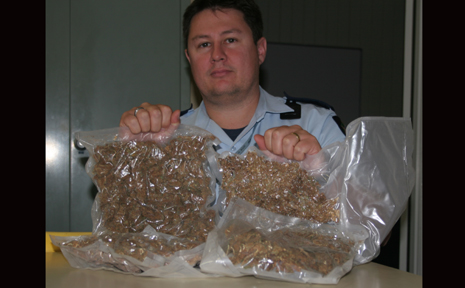 CRACK DOWN: Biloela Police Constable Phil Marshall with some of the drugs confiscated recently. Police and Crime Stoppers are encouraging Callide and Dawson residents to give information on drug crimes to Crime stoppers.