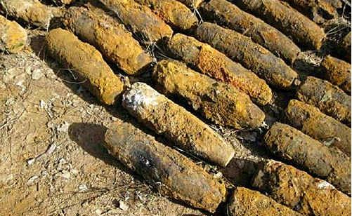 These shells uncovered at Columboola will remain stored on site until they are destroyed.