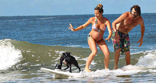 Kim and Sarah Faife of Mullaway, pictured here surfing with dog Grommet, introduced their near born son, Fonzie, to the surf this week well before his arrival.