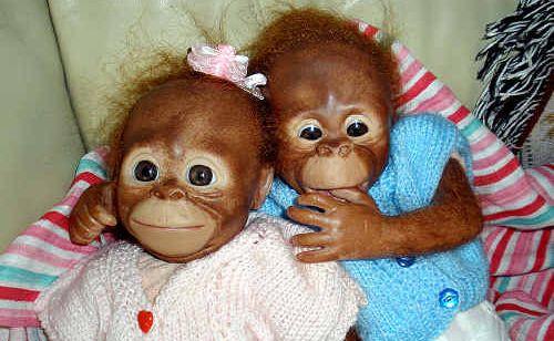 Baby orangutans Debra made.