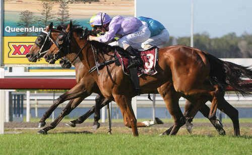 Paul Hammersley aboard Jad wins the McLachlan Place Racing Stables Handicap at Corbould Park yesterday.