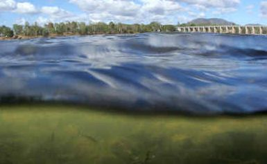 Scientists have discovered a previously unknown toxin that lurks deep in the Fitzroy River. It has no smell, can't be seen except with a microscope and is poisonous to mammals.