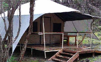 Non-intrusive safari tents, similar to those in Victoria's Wilsons Promontory National Park, could soon be available on Fraser Island.