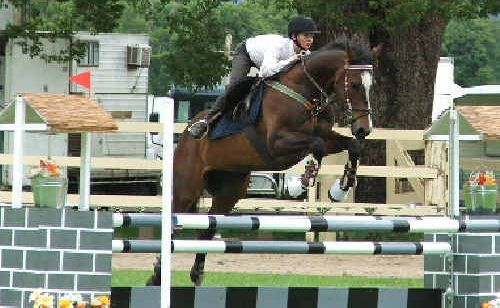 Jordan Miller and Mr Mojo Rising give a taste of what's on offer at the Cabarita Showjumping Classic this weekend.