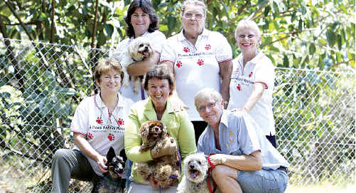 Volunteers of 4 Paws Animal Rescue with Cr Jenny McKay celebrate a $6000 council grant.