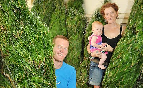 Viktor Molhanec and Jordanna Rosenbrock, with their baby Rubinka, are selling Monterey pine Christmas trees.
