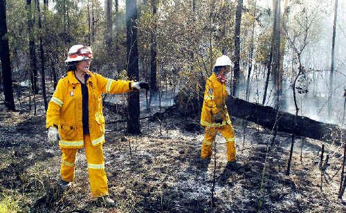 Volunteer firefighters from the Woombah Rural Fire Service survey burnt bushland beside the Pacific Highway at Tabbimoble caused by fire that is believed to be an act of arson.