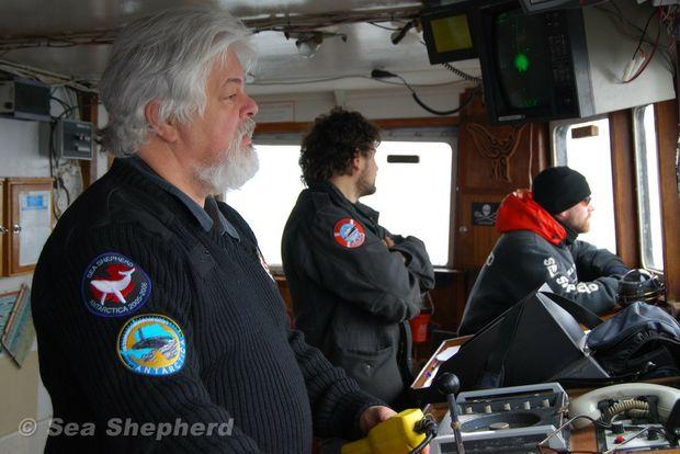 Steve Irwin captain Paul Watson