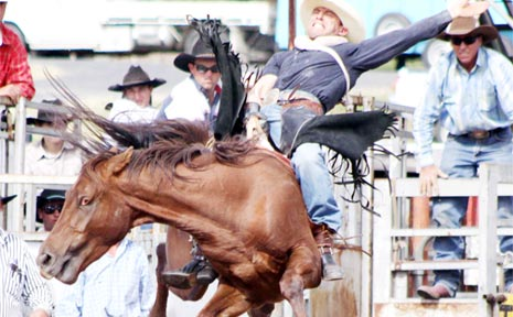 Catch all the action at the rodeo in Byron Bay next Wednesday night.