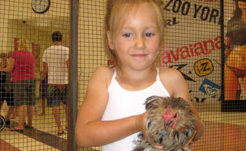 Holly Sangster spends her day in town playing with and feeding the baby animals.