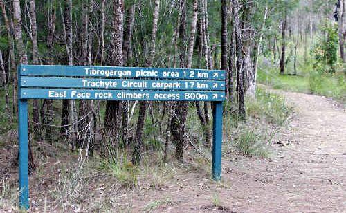 Telephone directories were illegally dumped (below) in Mount Tibrogargan national park.