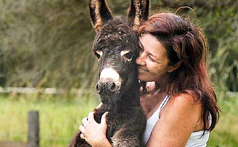 Jodie Barnier of North Lismore with one of her donkey foals, Misty.
