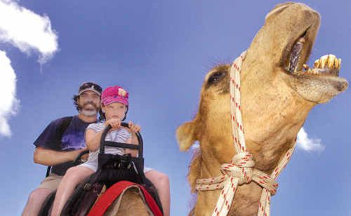 A camel ride at Pialba beach is one of the many attractions that could help lure new Chinese tourists to the Fraser Coast. Bathurst's  gave it a try yesterday.