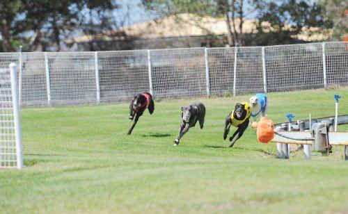 Bundaberg's Thabeban Park Racecourse has recieved a $200,000 upgrade.