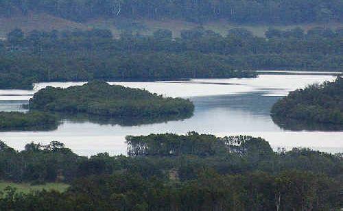 Cobaki Lakes development offers short-term gain for long-term pain, according to Cr Katie Milne.