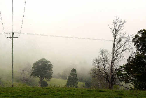 Misty mornings in the Richmond are not uncommon, as was the case on Monday when the valleys and arterial roads around Lismore were affected.