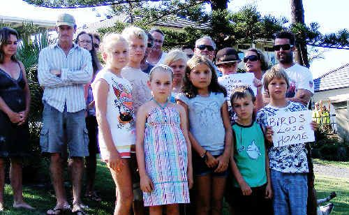 Pacific Terrace residents join forces yesterday to vent their anger about the removal to two Norfolk Island pines near their homes at East Ballina and stage a push to have Ballina Shire Council implement a tree preservation order.