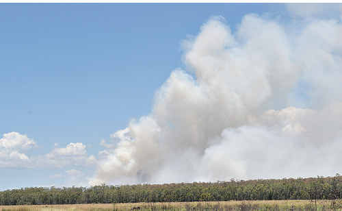 More than 250 hectares of scrub burning in the Bells Creek area created a smoke plume that attracted many calls to emergency services.