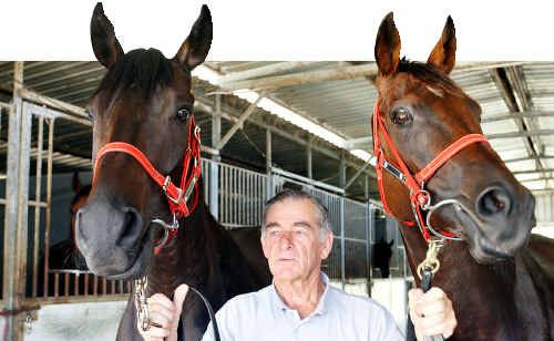 Trainer Trevor Miller has two entries in the Sunshine Coast Cup, five-year-old gelding Sommersea Drive, left, and eight-year-old mare Riseupsinging.