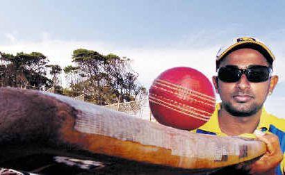 Jeewan De Silva made an immediate impression on the Lennox Head cricket team after arriving from Sri Lanka, taking 6-42 against Murwillumbah last weekend.