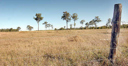 Shane Stewart says he wishes his Della Vista Lakes estate, which was to have been built on this land in Maryborough, could have been in Bundaberg.