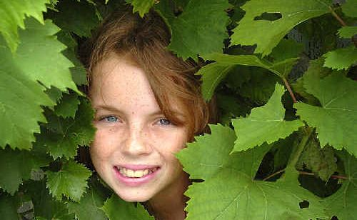 Jasmine Dawe, 12, spends her Saturday among the grapevines and other living plants learning about permaculture at the Cottage in Hervey Bay.