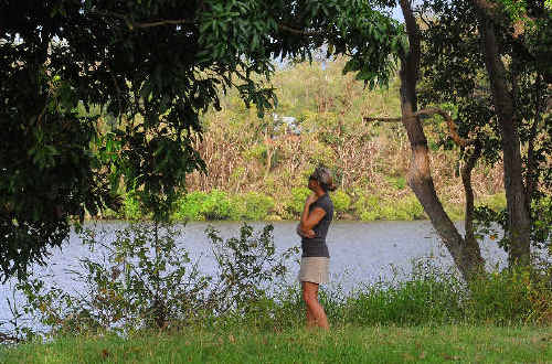 Lila Walker looks across the river to the trees that are home to the Maclean bat colony.