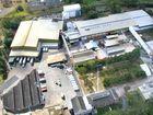 Port Alma live exports 'unequivocally bad' - Teys Australia