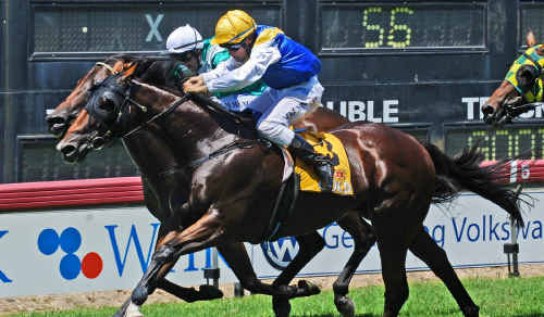 Top Crown fights past Admiral Nediym to win the Ulmarra Chip-in Cup at Grafton on Saturday.