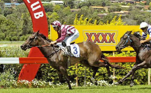 Calamine, ridden by Chris Whiteley, crosses the line ahead of Yabbra (Marlon Dolendo) to win the Byron Bay Manor Maiden Handicap at the Pork Industry race day at Lismore Turf Club yesterday.