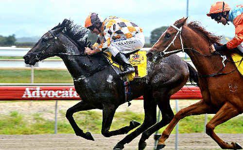 John Keating steers home a winner at Coffs Harbour.