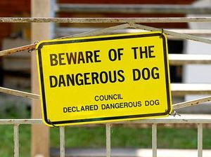 Law gives councils more power to deal with dangerous dogs
